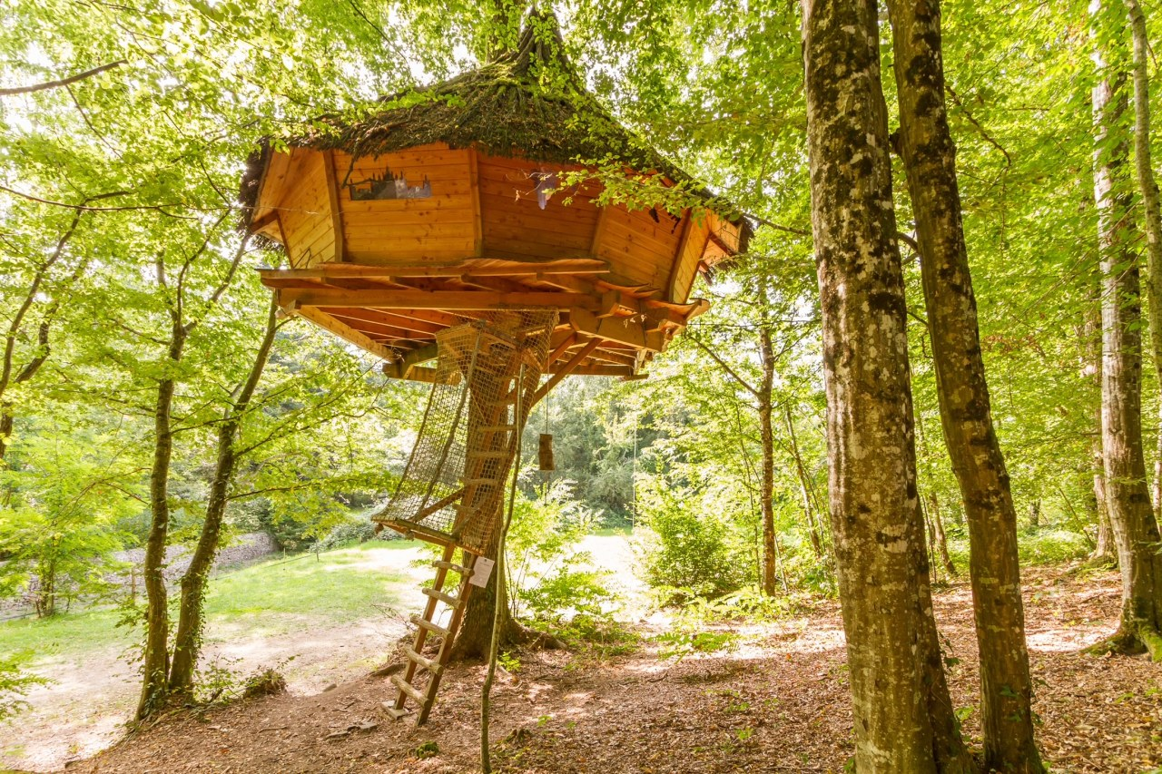 Stairway to haven – tree house holidays get even closer tonature
